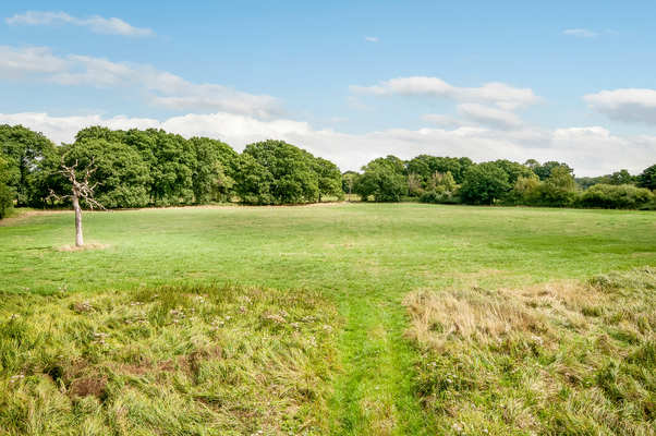 Thumbnail Land for sale in Suetts Lane, Bishops Waltham