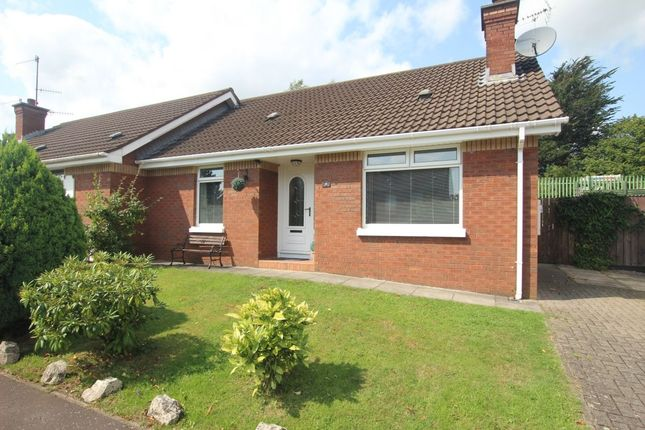 Thumbnail Bungalow for sale in Old Mill Drive, Newtownabbey