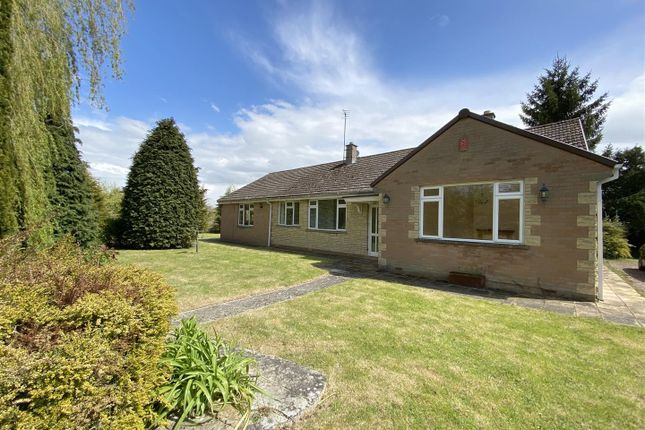 Thumbnail Detached bungalow for sale in Corse Lawn, Gloucester