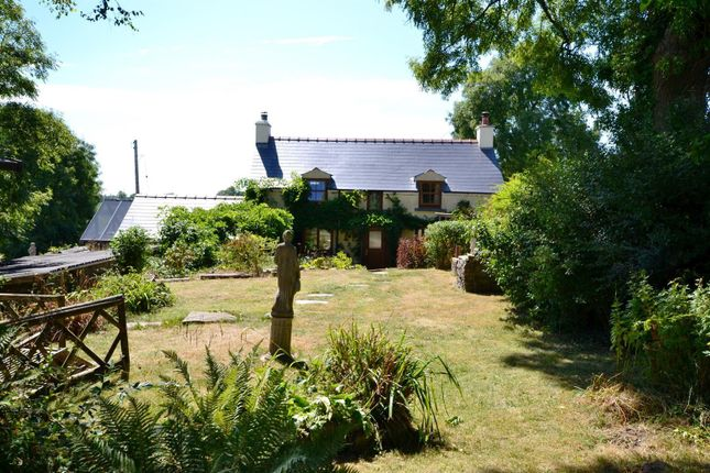 Thumbnail Detached house for sale in Jeffreyston, Kilgetty