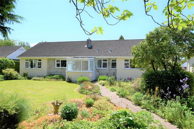 Thumbnail Detached bungalow for sale in St. Chads Avenue, Midsomer Norton, Radstock
