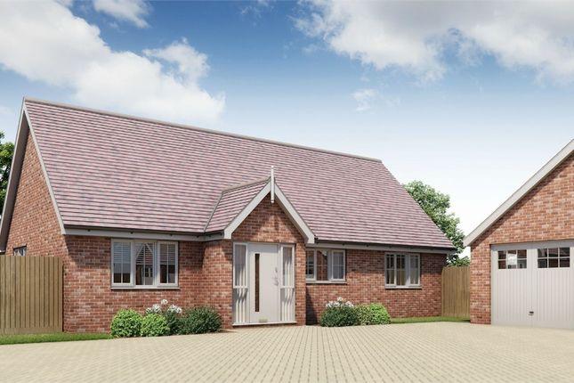 Thumbnail Detached bungalow for sale in Plot 17 Springfield Meadows, Little Clacton, Essex