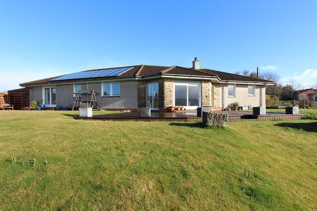 Thumbnail Detached bungalow for sale in Caberfeidh North Kessock, Inverness, Highland.