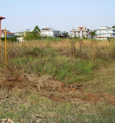 Thumbnail Land for sale in Nea Plagia, Chalkidiki, Gr