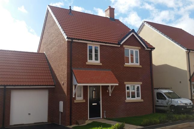 Thumbnail Link-detached house to rent in Morgan Street, Bridgwater