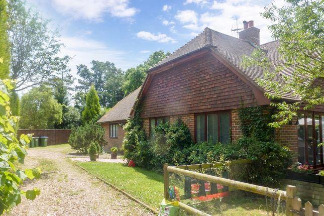 Thumbnail Bungalow to rent in Saucelands Lane, Shipley, Horsham