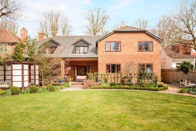 Thumbnail Detached house for sale in Frances Avenue, Maidenhead, Berkshire
