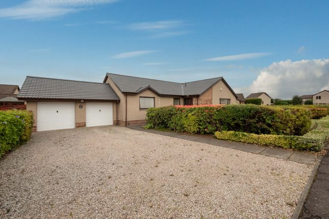 Thumbnail Bungalow for sale in Altamount Road, Blairgowrie, Perthshire
