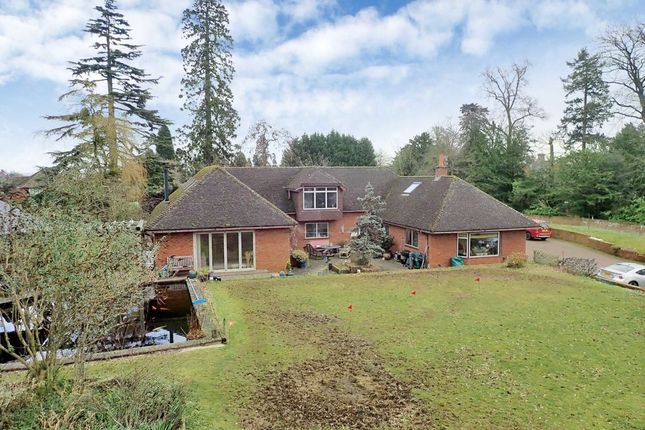 Thumbnail Detached bungalow for sale in Church Way, Holmer, Hereford