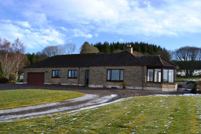Thumbnail Detached bungalow to rent in Granern, Dunphail, Forres