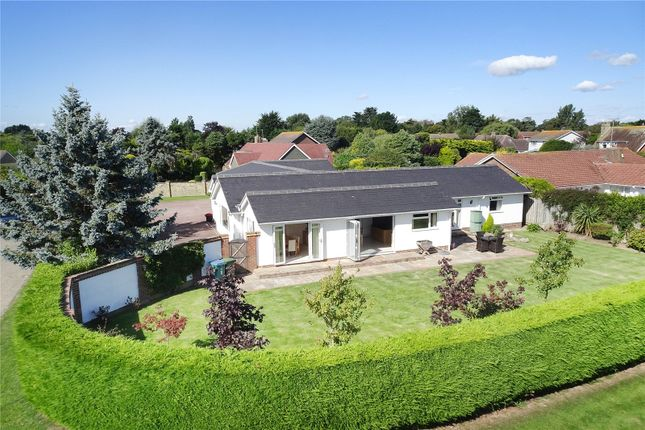 Thumbnail Bungalow for sale in Willowhayne, East Preston, West Sussex