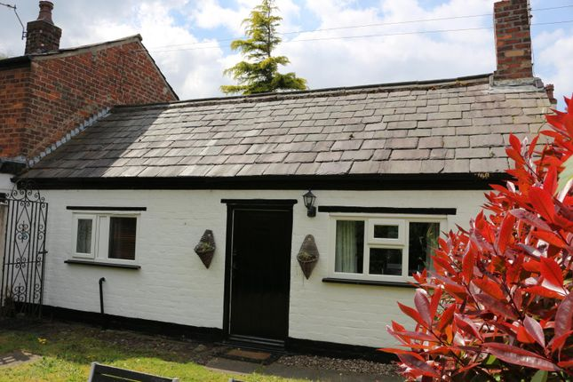Thumbnail Cottage to rent in 66E Botanic Road, Southport
