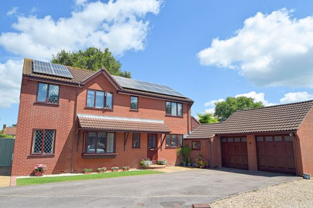 Thumbnail Detached house for sale in Pear Drive, Willand