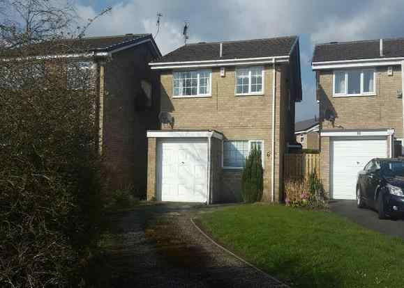 Thumbnail Detached house for sale in Windermere Avenue, Dronfield Woodhouse, Dronfield