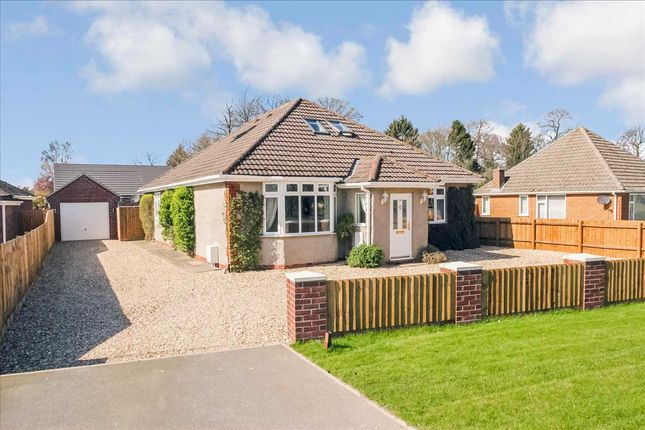 Thumbnail Bungalow for sale in Grantham Road, Waddington, Lincoln