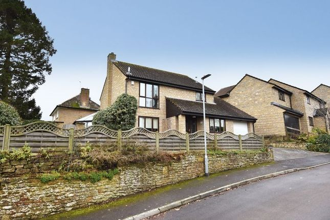 Thumbnail Detached house for sale in Orchard Close, South Petherton