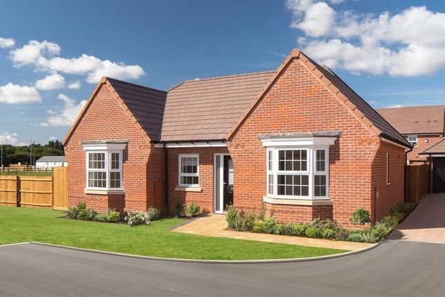 "Thumbnail Detached house for sale in ""Buckfastleigh"" at Old Stowmarket Road, Woolpit, Bury St. Edmunds"