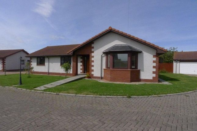 Thumbnail Bungalow for sale in Caiplie Craig, Pittenweem, Anstruther