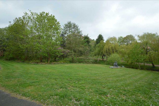 Park To The Rear of Common Green, Hamilton ML3