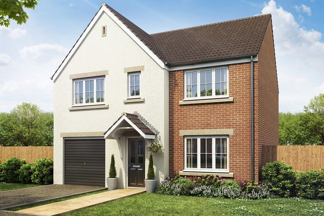 """Thumbnail Detached house for sale in """"The Winster"""" at Boston Road, Kirton, Boston"""