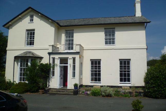 Thumbnail Detached house to rent in Calf Street, Torrington