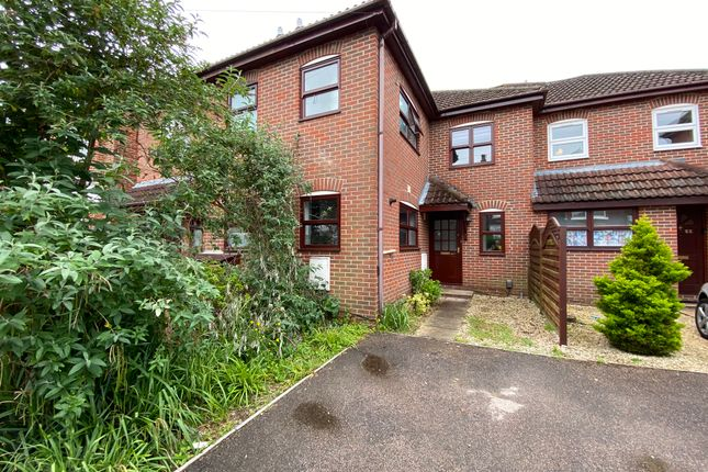 Thumbnail Terraced house for sale in Alma Road, Portswood