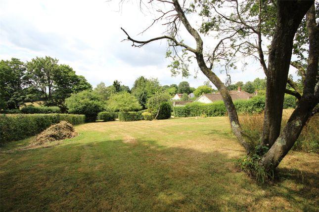 Thumbnail Land for sale in Lymington Bottom, Four Marks, Alton, Hampshire