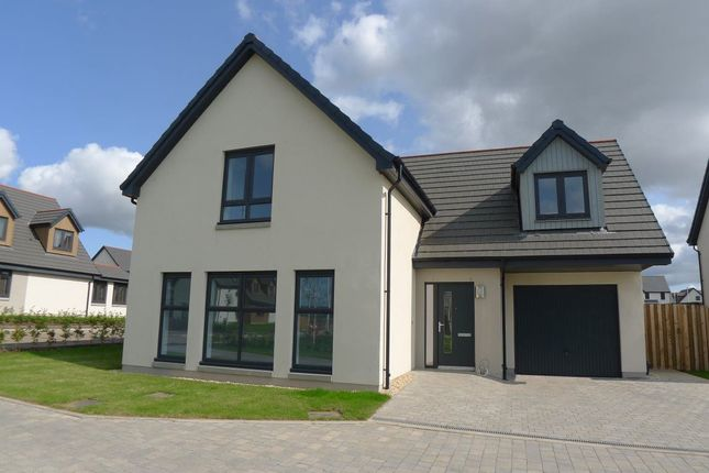 Thumbnail Detached house to rent in Strathgray Road, Dykes Of Gray, Dundee