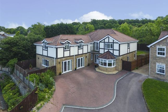 Thumbnail Detached house for sale in Newbridge, Newport