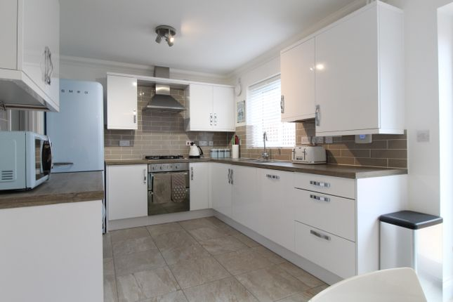 Thumbnail Semi-detached house for sale in Butterfly Trail, Stanway, Colchester