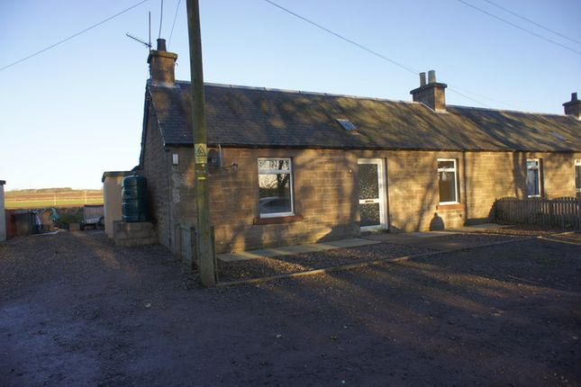2 bedroom semi-detached house to rent in Kinnell, Arbroath