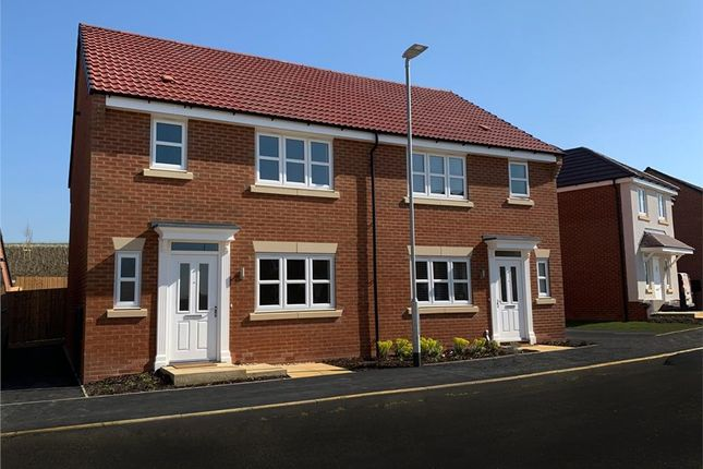 """Thumbnail Semi-detached house for sale in """"Malvern"""" at Olympus Avenue, Tachbrook Park, Warwick"""