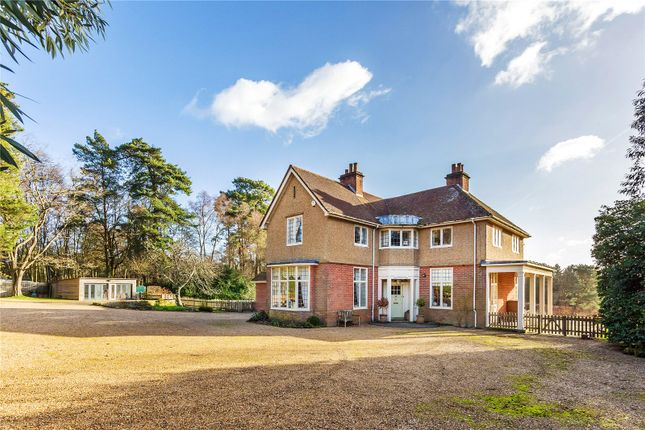 Thumbnail Detached house for sale in Kings Drive, Midhurst, West Sussex