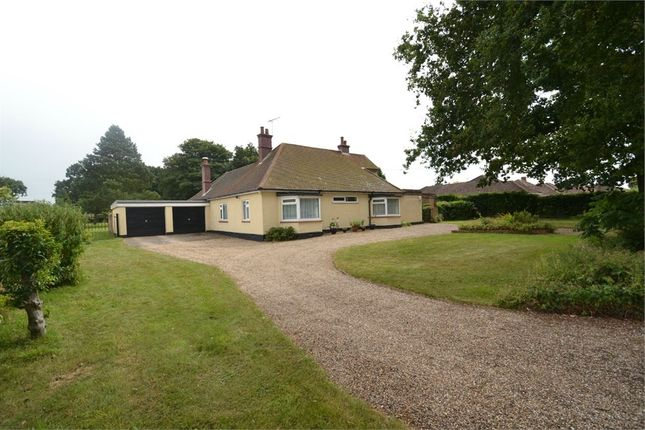 Thumbnail Detached bungalow for sale in Coach Road, Great Horkesley, Colchester