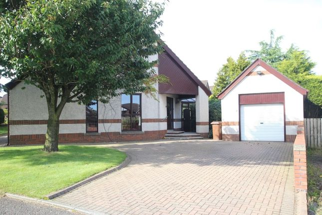 Thumbnail Detached house for sale in Holly Lane, Newtownabbey