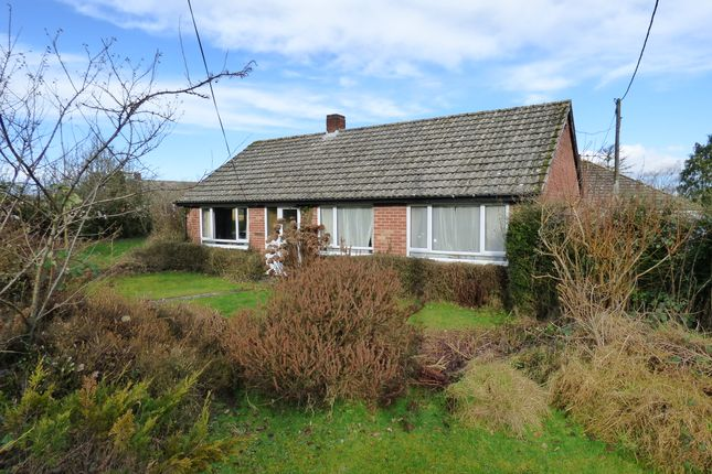 Thumbnail Detached bungalow for sale in Forge Lane, Zeals