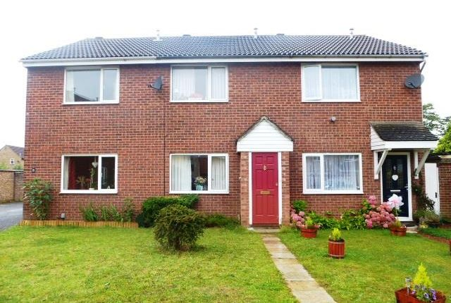 2 bed property to rent in Spring Sedge Close, Stanway, Colchester CO3