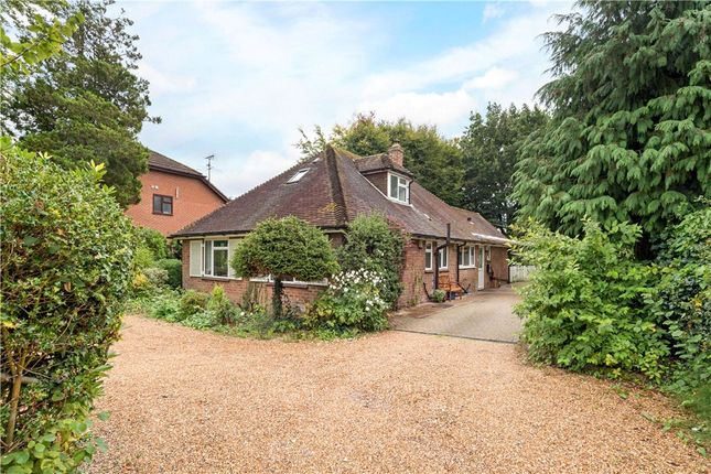 Thumbnail Detached bungalow for sale in Southwood Road, Farnborough, Hampshire