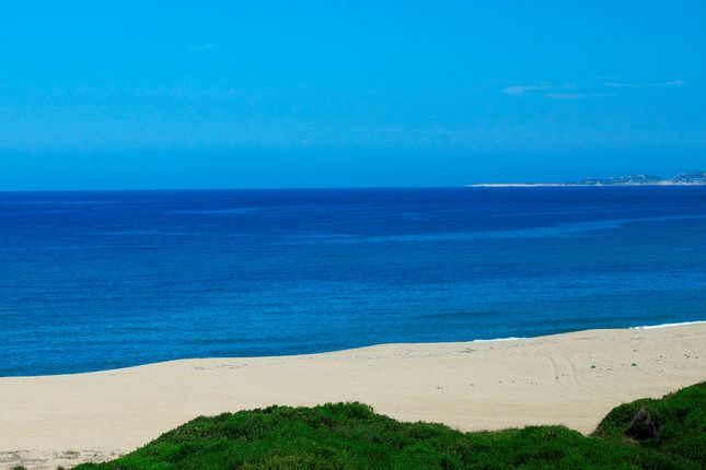 Beachfront_Ionian