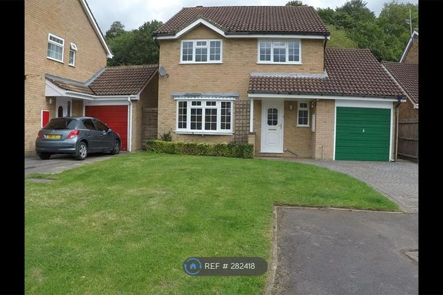 Thumbnail Detached house to rent in Rosedale Avenue, Stonehouse