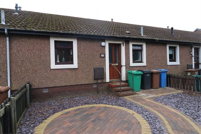 Thumbnail Terraced bungalow for sale in South Grove, Methil, Fife