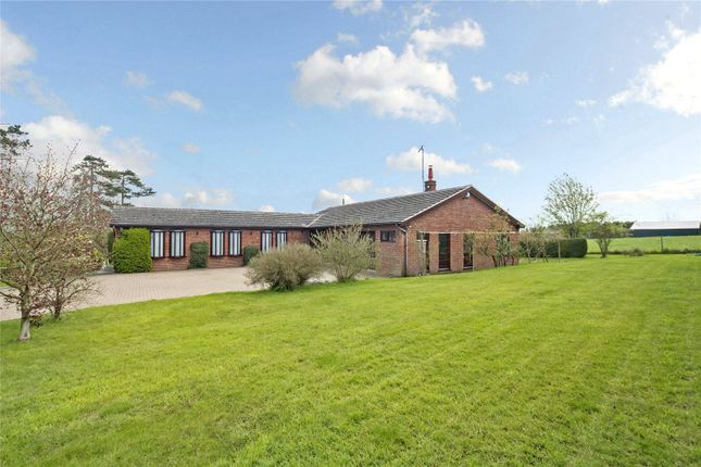 Thumbnail Detached bungalow for sale in Court Hill, Rous Lench, Evesham, Worcestershire