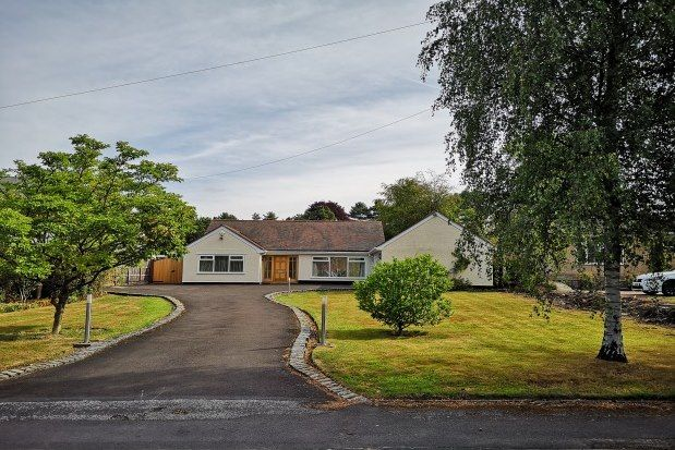 Thumbnail Detached house to rent in Anglesey Drive, Stockport