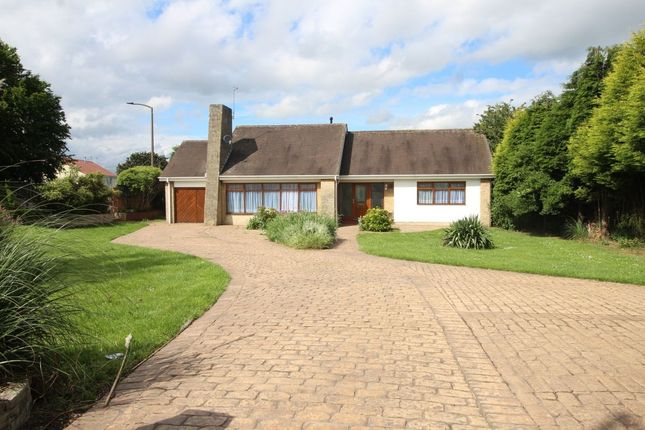 Thumbnail Bungalow for sale in Barnsley Road, Scawsby, Doncaster
