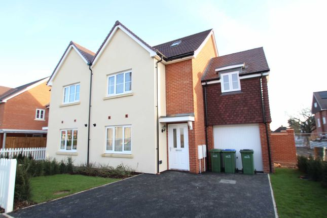 Thumbnail Semi-detached house to rent in Frampton Terrace, Montbelle Road, New Eltham