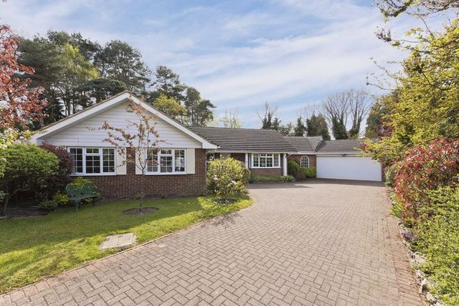 Thumbnail Detached house for sale in Hurstwood, Ascot