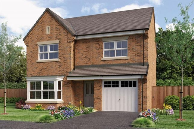 "Thumbnail Detached house for sale in ""The Ryton"" at Otley Road, Killinghall, Harrogate"