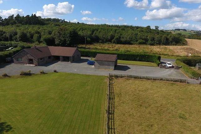 Thumbnail Detached bungalow for sale in Llanfilo, Brecon