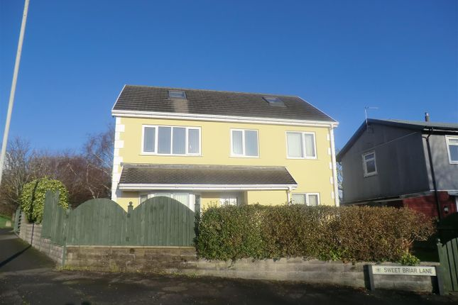 Thumbnail Detached house to rent in Sweet Briar Lane, West Cross, Swansea