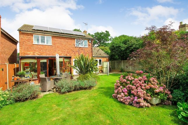 Thumbnail Detached house for sale in Post Office Road, Lingwood, Norwich